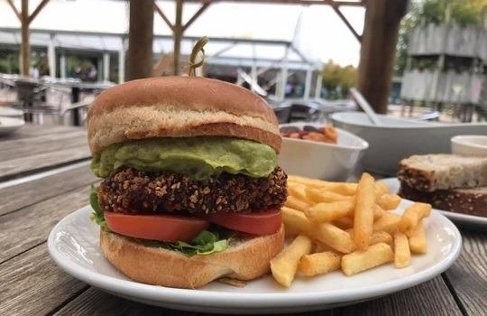 Veg burger 540x350