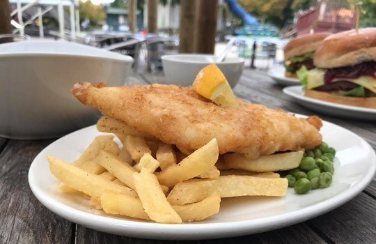 fish & chips 540x 350
